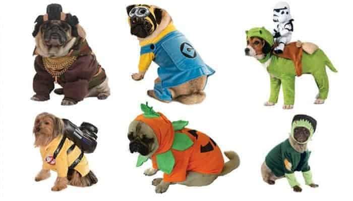 Kostuums voor honden